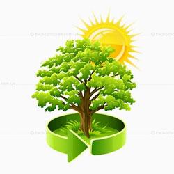 Экологическая продукция | Экохомвей