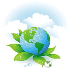 Экологические моющие средства | Экохомвей